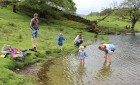 Perfect for children - Loughrigg Tarn and the tadpoles.